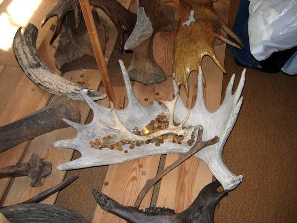 В музее истории кости в доме-мастерской Минсалима Тимергазеева