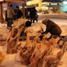 Так продают оленье мясо в Салехарде
