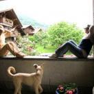 Мечты и швейцарские виды