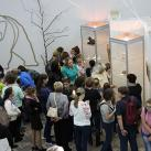 Экскурсия для детей во время открытия выставки «Ветвистый-когтистый», Нефтеюганс